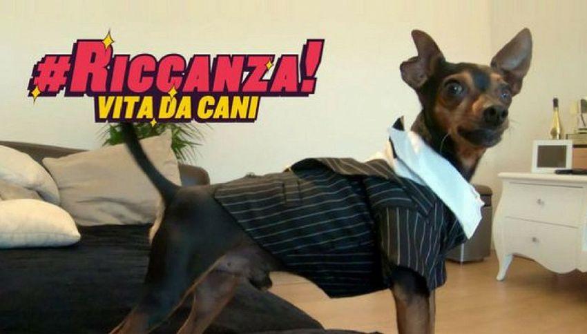 """Chi sono i protagonisti di """"Riccanza - Vita da cani"""" su MTV"""