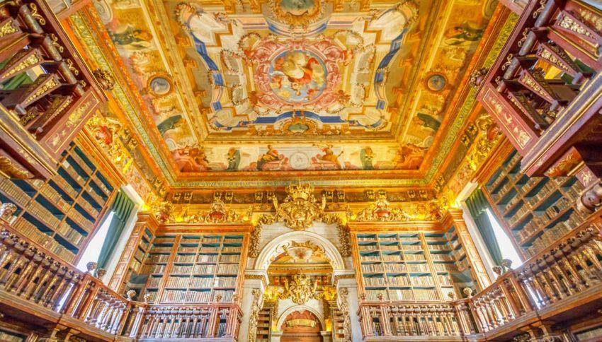 In Portogallo c'è una biblioteca protetta dai pipistrelli