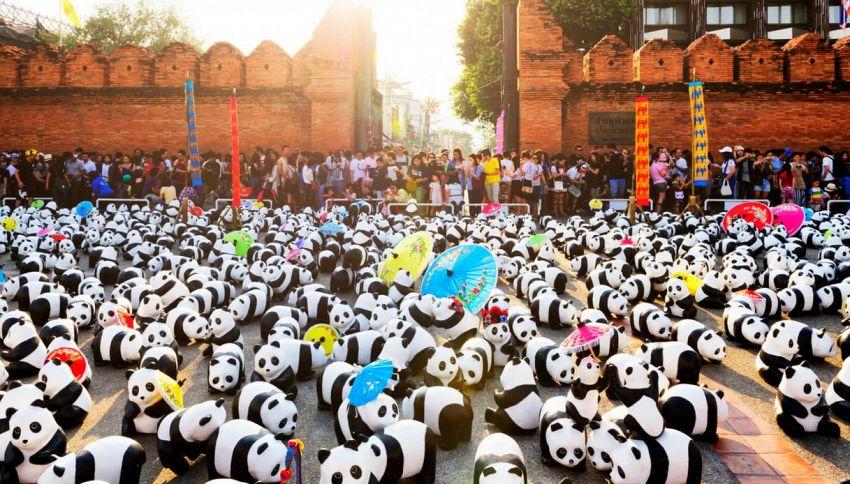 L'invasione dei panda di cartapesta a Bangkok