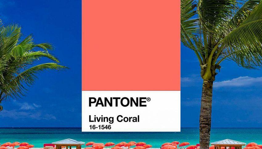 Il rosso corallo è il colore dell'anno 2019