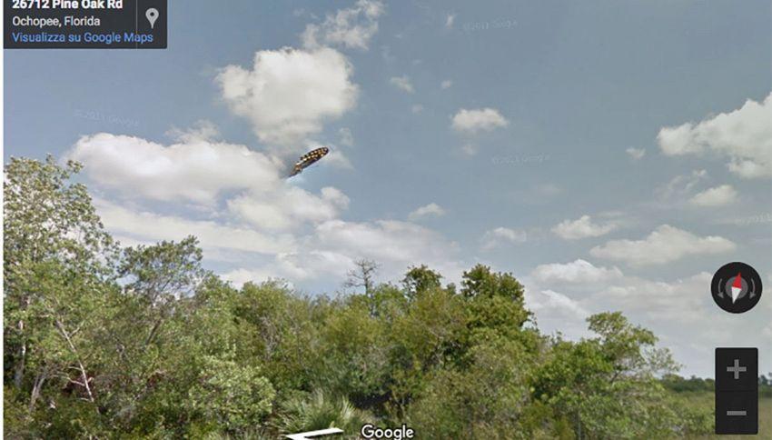 Su Street View gli americani scambiano una farfalla per un UFO