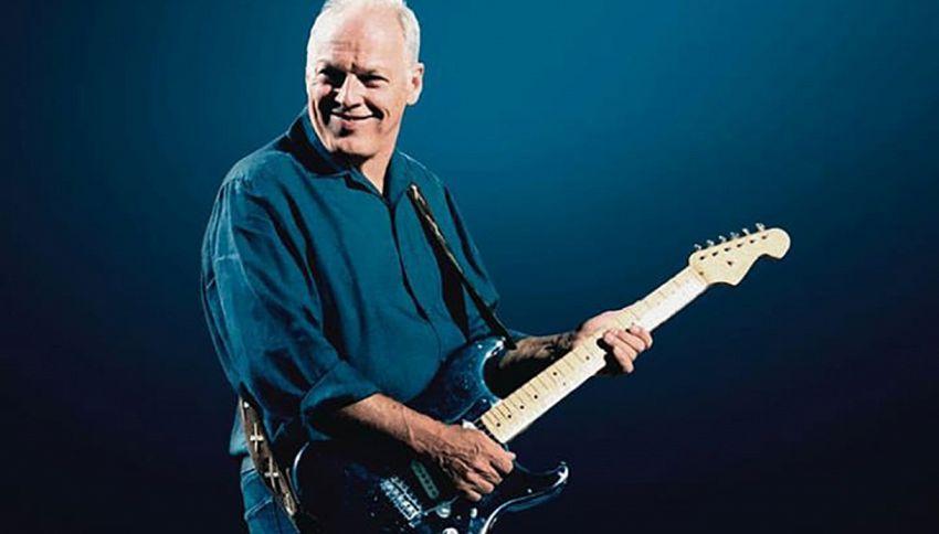 Presto potrai comprare una delle 120 chitarre di David Gilmour