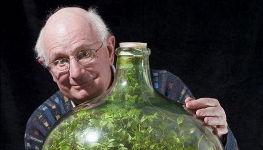 Quest'uomo ha piantato il suo giardino in una bottiglia