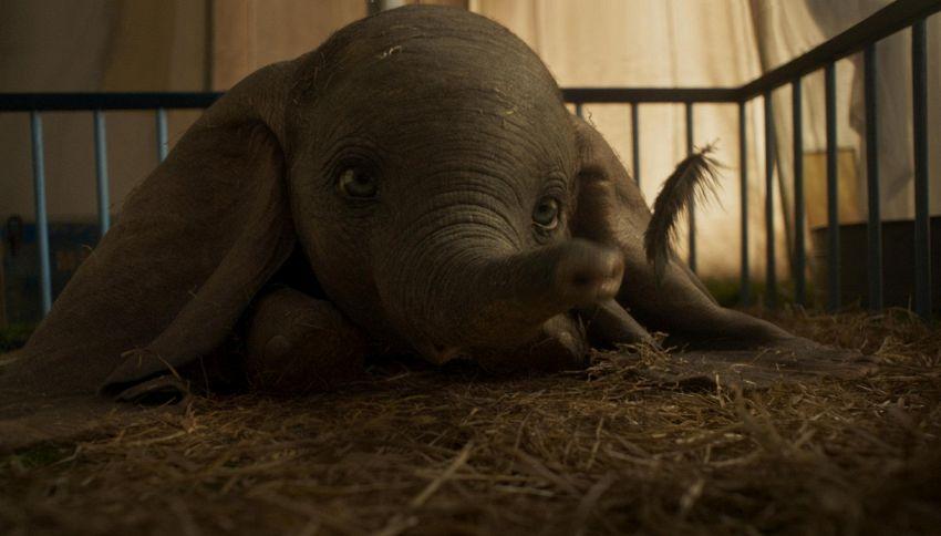 """Elisa sarà nella colonna sonora del film """"Dumbo"""" di Tim Burton"""