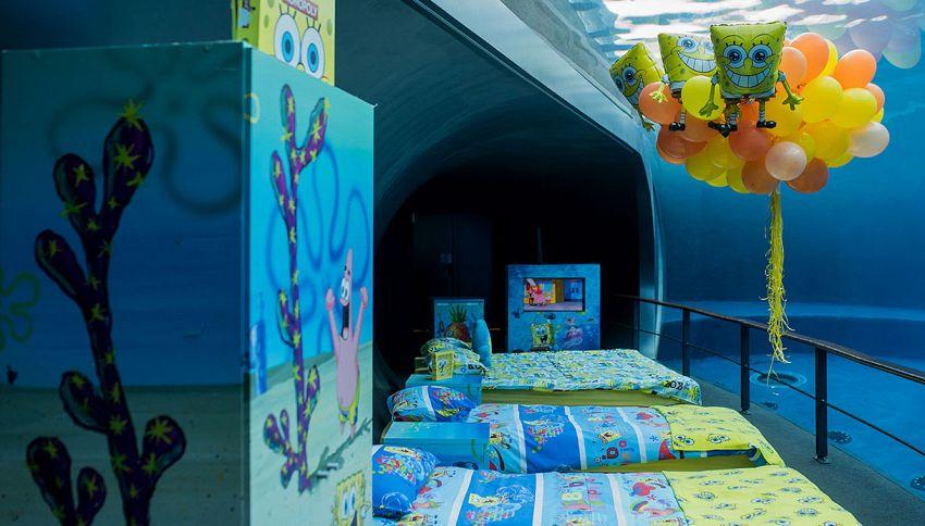 Puoi dormire con delfini e squali: l'incredibile camera da letto