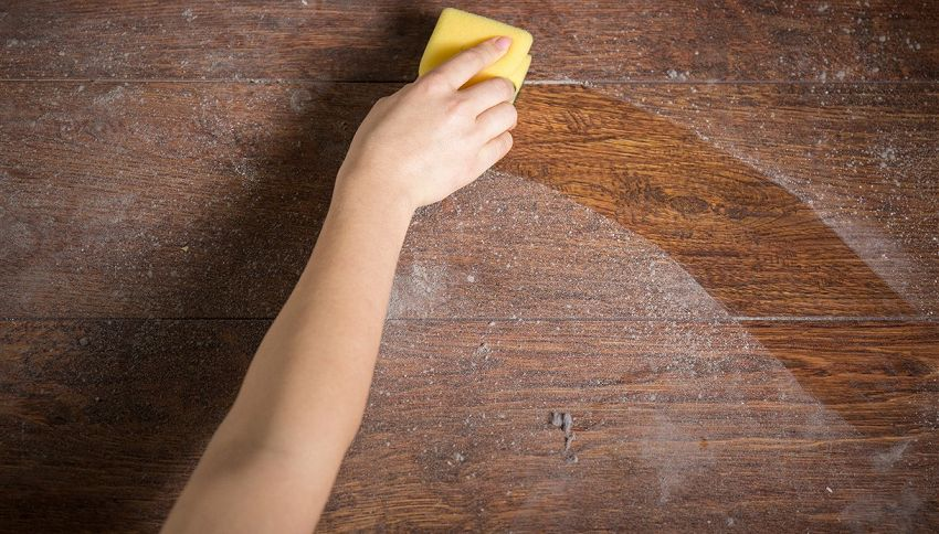 Vuoi dimagrire? Allora tieni la casa più pulita #lodicelascienza