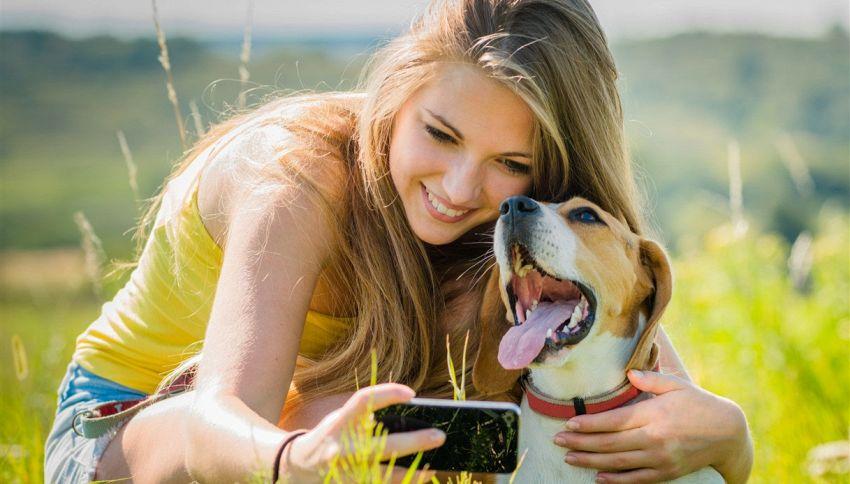 Hai provato FaceApp sul tuo animale? Guarda le foto esilaranti