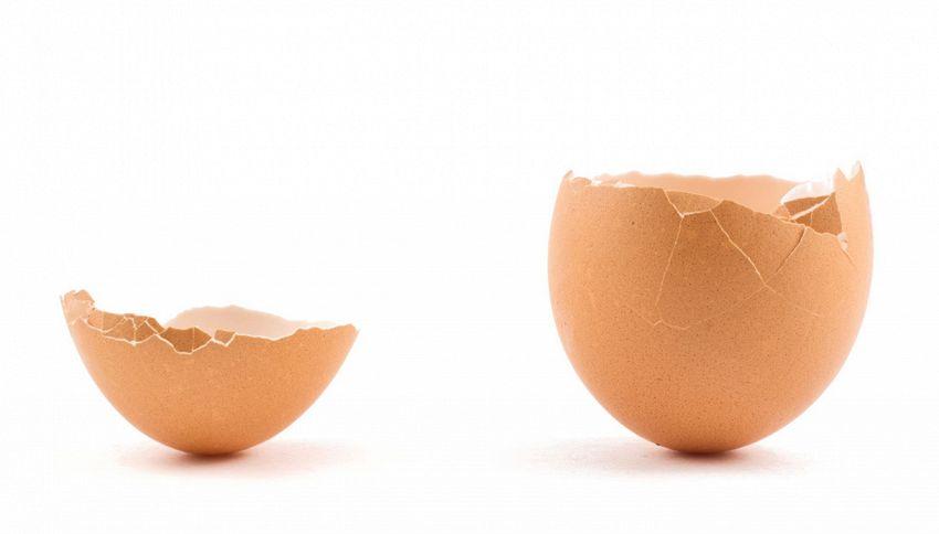 Non gettare il guscio d'uovo: serve per le tue ossa