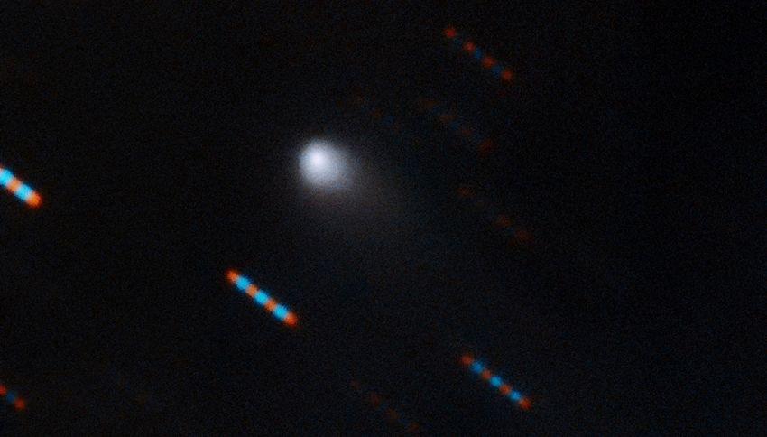 Oggetto misterioso da un altro sistema solare: la foto ufficiale