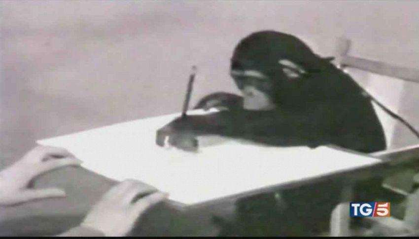 Scimpanzé pittore che incantò Picasso: 220mila€ per i suoi quadri