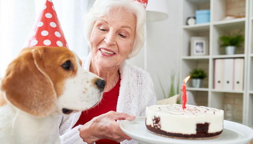"""Vuoi sapere l'età """"umana"""" del tuo cane? Ecco il calcolo corretto"""