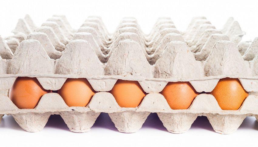 Sembrano le classiche uova, ma ecco cosa c'è dentro il guscio