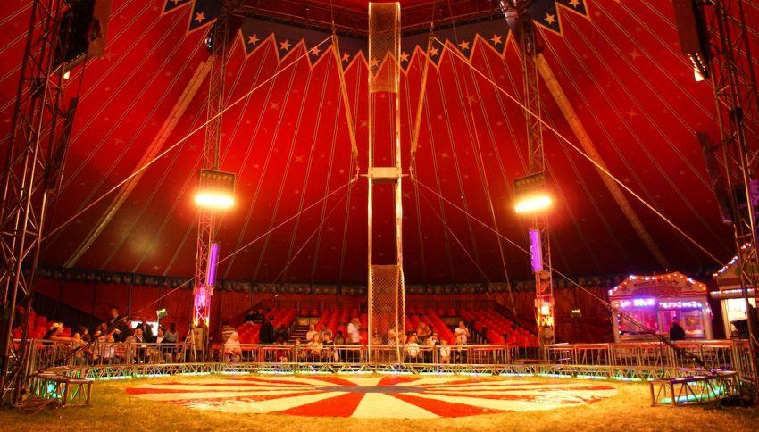 Circo bloccato, i cittadini provvedono al cibo per gli animali