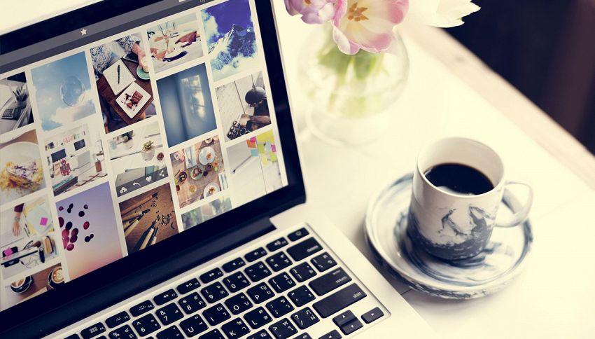 Aumentare la produttività a casa? Circondati di foto di cuccioli