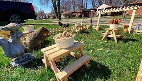 Costruisce un ristorante per gli scoiattoli nel giardino di casa
