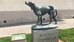 La storia di Fido, l'Hachiko italiano: una statua per ricordarlo