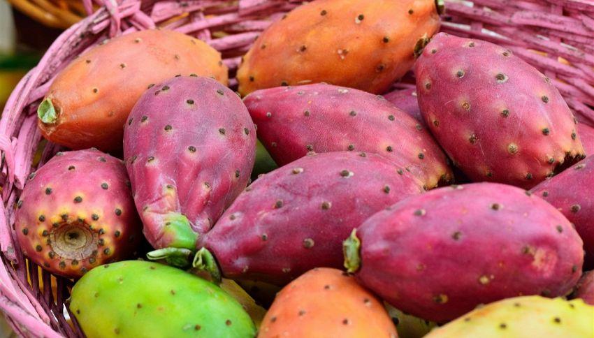 Fichi d'India, non mangiarne troppi! Cosa possono causare i semi
