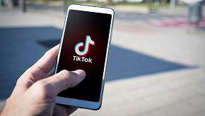 TikTok: una petizione blocca l'account di un'insegnante vegana