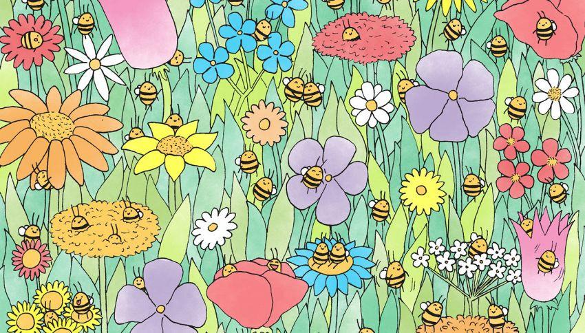 Mettiti alla prova: quante api vedi in questa foto?