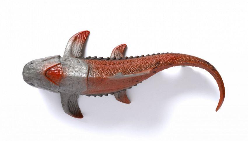 Non è estinto: avvistato il pesce più raro e antico al mondo