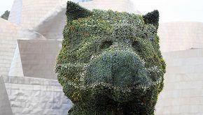Al Guggenheim di Bilbao il 'Puppy' di Jeff Koons ha la mascherina