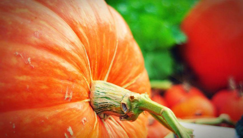 La zucca è una verdura o un frutto? L'errore che si commette