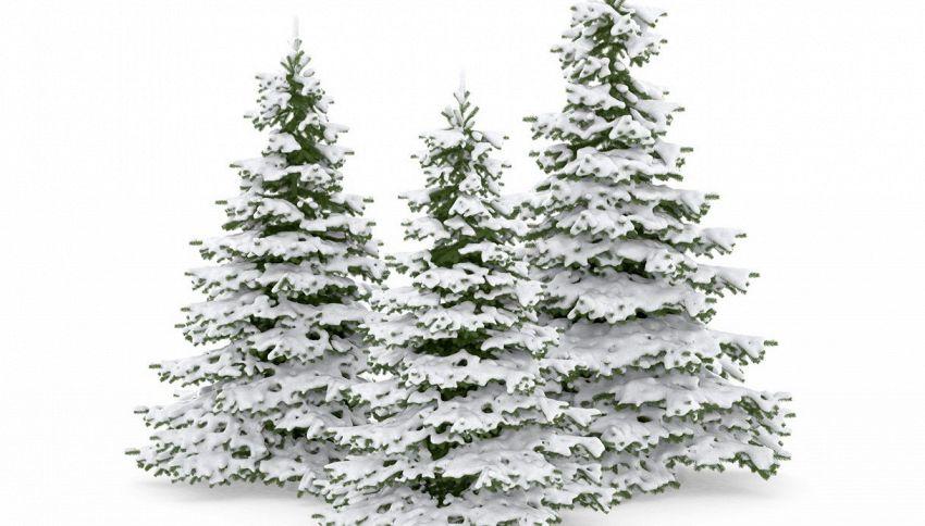 Albero di Natale, il trucco per ricreare la neve artificiale