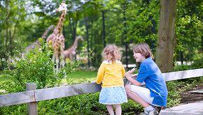 25mila persone comprano uno zoo per liberare gli animali