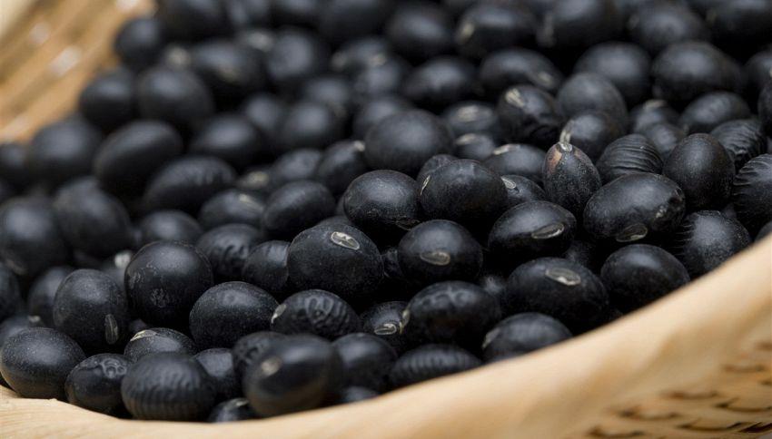 Perché dovresti mangiare i fagioli neri