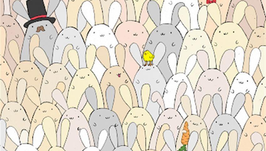 Riesci a vedere l'uovo nascosto in questa immagine?