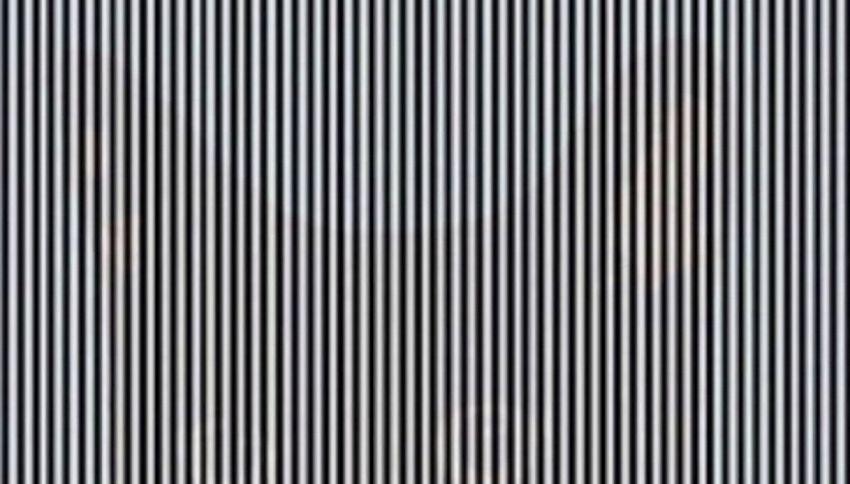Puoi vedere questa illusione ottica solo se scuoti la testa