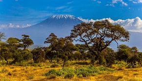 A sette anni ha scalato il Kilimanjaro tra paure e determinazione