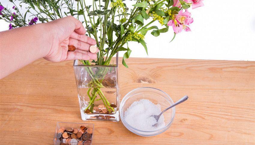 Come mantenere i fiori freschi? Usa le monete di rame