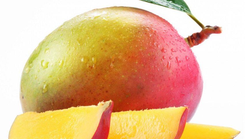 In Colombia trovato il mango più pesante del mondo