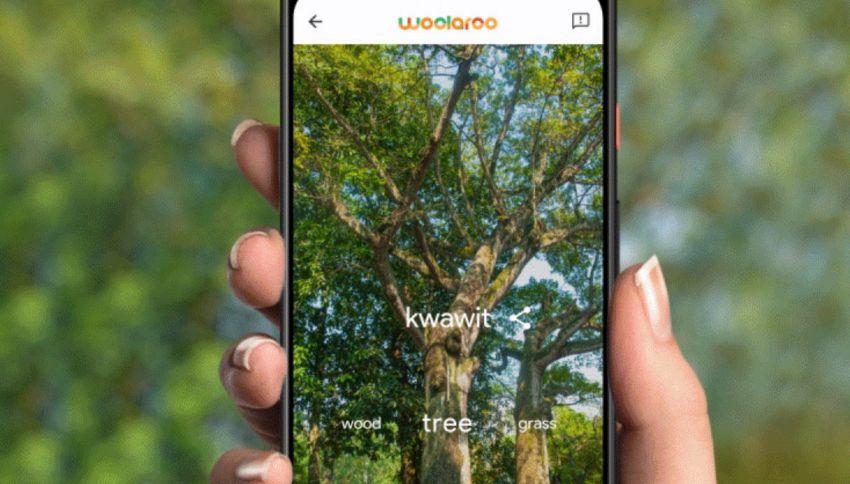 Woolaroo, l'app che salva le lingue indigene come il siciliano
