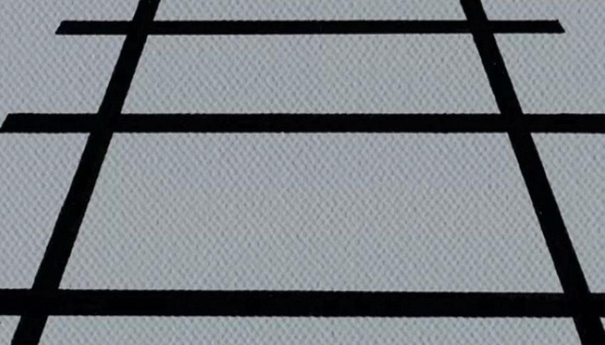 L'illusione ottica di Ponzo: qual è la linea più lunga?