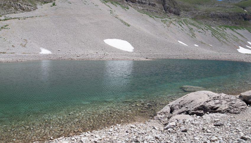 Il gamberetto sui Monti Sibillini che rischia l'estinzione
