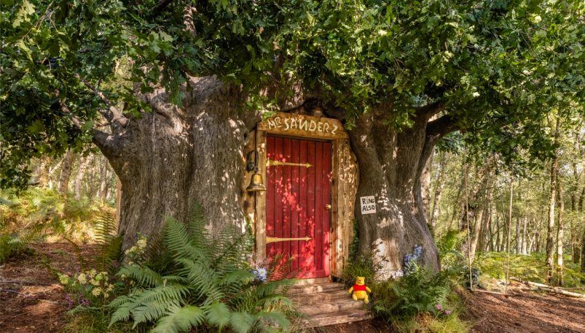 'Bearbnb' è la casa ispirata a Winnie The Pooh che puoi affittare