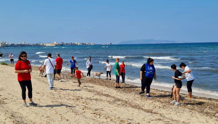 I volontari portano al mare i cani senza famiglia