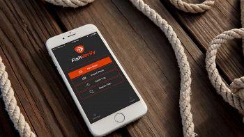 Come riconoscere i pesci con lo smartphone: ecco FishVerify