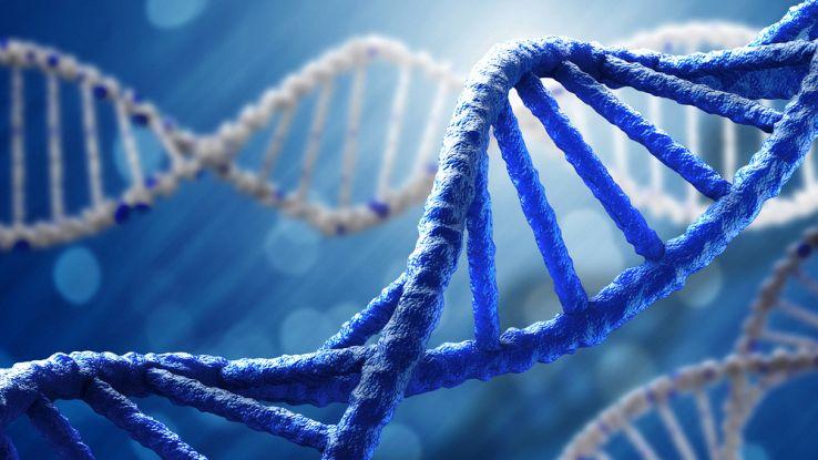 Test DNA economico, dagli Stati Uniti il chip che costa un centesimo