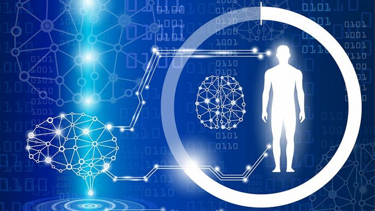 Un PC nel corpo: scienziati trasformano il fegato in biocomputer