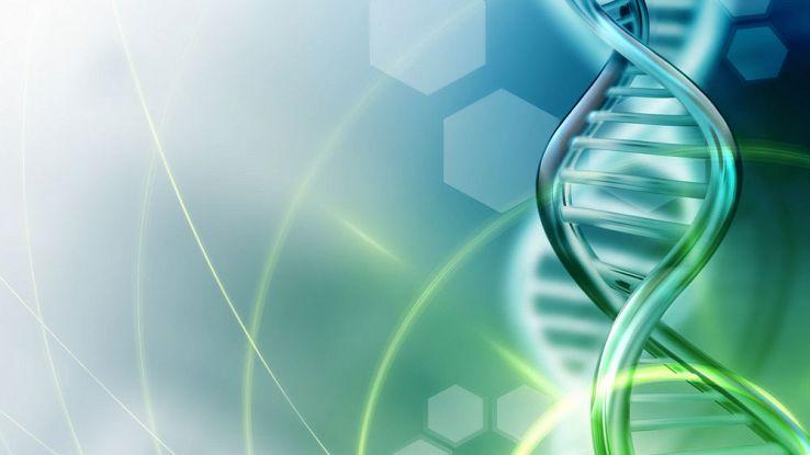 Hard disk? No, in futuro memorizzeremo i dati nel DNA