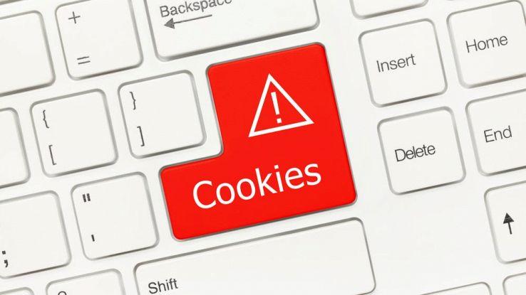 Cosa sono i cookie e come evitare che ci spiino