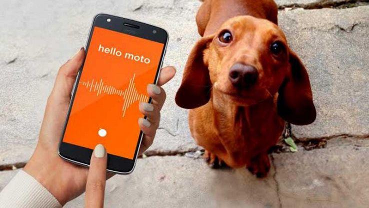 Motorola Moto Mod Ped