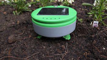 Il mini robot che taglia le erbacce