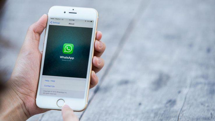 WhatsApp, tre novità in arrivo per la versione iPhone
