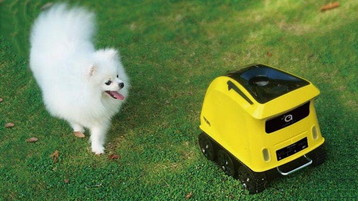 Anthouse, il robot casalingo che si occupa dei nostri cani