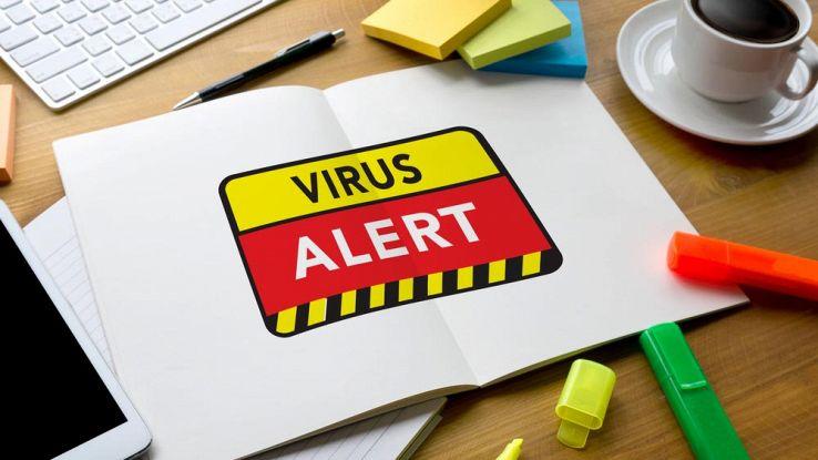 Submelius, il virus che sta colpendo milioni di italiani