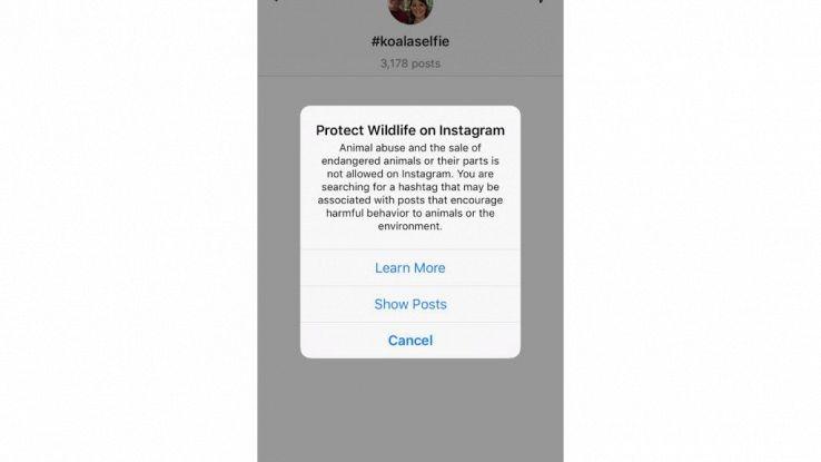 Instagram, stop selfie animali selvatici